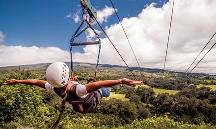 3-Hour Zipline Tour or 2.5 Hour Treetop Zipline Tour with Pi'iholo Ranch Adventures