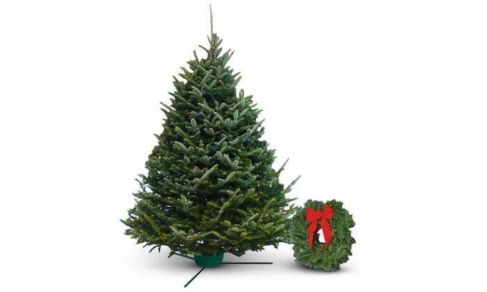 pre order fresh cut christmas trees or wreaths w free home delivery