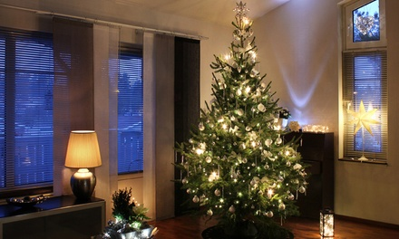 Nordman Fir Christmas Trees with Easy Stand from Groupon UK ...