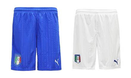 Puma FIGC Italia Training Shorts