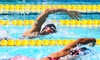 Fairplex - Fairplex: Admission to the Modern Pentathlon World Cup Valid February 24, 25, or 26, 2017 (Up to 33% Off)