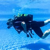 Discover Scuba Diving Experience