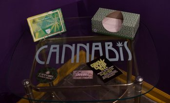 Up to 52% Off Admissions to The History Of Cannabis Museum