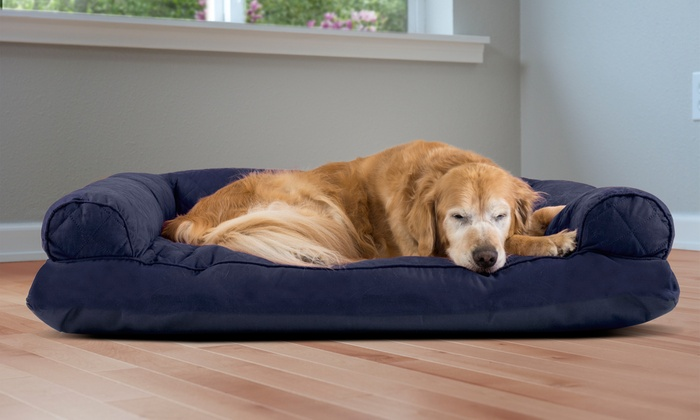 Remarkable Up To 72 Off On Furhaven Sofa Style Pet Bed Groupon Goods Short Links Chair Design For Home Short Linksinfo