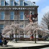 Entree Museum Volkenkunde