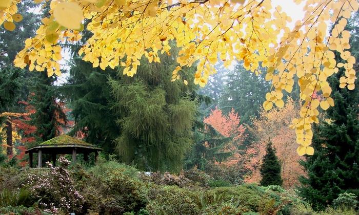 Rhododendron Species Botanical Garden   Lakeland North: Admission At Rhododendron  Species Botanical Garden ...