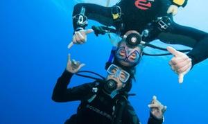 Sea Wolf: Corso di sub con immersione nella Costa del Conero per una o 2 personeal centro Sea Wolf (sconto fino a 83%)