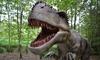 Entradas a Vives Park Dinosaurios