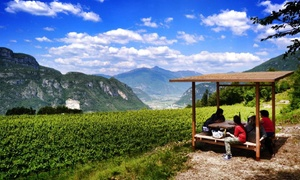 Borgo dei Posseri - Societa Agricola Semplice: Enotour con degustazione di salumi più bottiglia di vino per 2 o 4 persone al Borgo dei Posseri (sconto fino a 62%)
