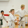 Three Karate Lessons for Child