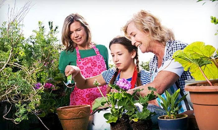 Colesville Nursery - Beaverdam: $20 for $40 Worth of Plants, Gardening Supplies, and Outdoor Decor at Colesville Nursery in Ashland