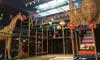 "36% Off ""Open Play"" Sessions at Safari Run- Plano"
