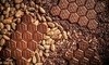 Up to 43% Off Chocolate Tasting at Hexx Chocolate & Confexxions
