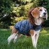 Eddie Bauer Hooded Dog Coat with Fur Trim