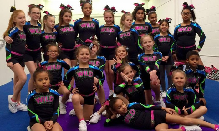 De Wild Cheer And Tumble - Newport: Four Weeks of Cheer and Tumbling Classes at DE Wild Cheer and Tumble  (46% Off)