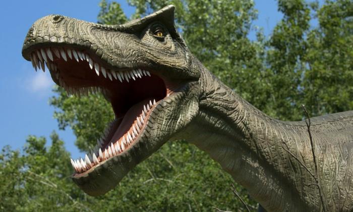 Field Station: Dinosaurs in - Leonia, NJ | Groupon