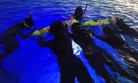 夜の海の幻想的な世界。新しい景色との出会いを≪星空ナイトシュノーケリング/2名分 or 3名分 or 4名分≫ @ココマジックダイビング...
