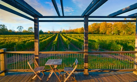 Winery Tour and Tasting for Four or Eight People at By Chadsey's Cairns Winery and Vineyard (Up to 60% Off)