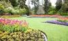 Zen or Urban Gardening Course