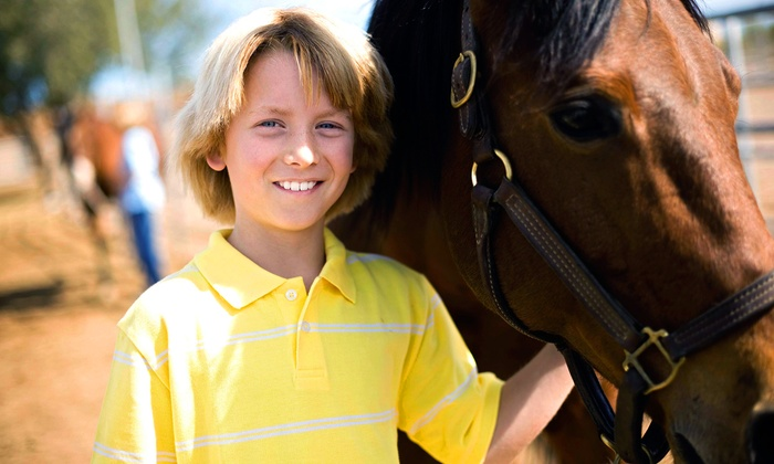 What We Wish For Stables - Dan River: $125 for One-Month Equestrian Lease with Up to 10 Rides at What We Wish For Stables ($250 Value)