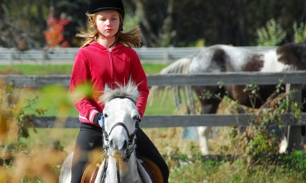 Four Horseback-Riding Lessons at The Stables at Brush Creek (70% Off)