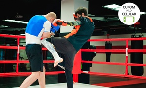 Qualityforms: 1 ou 3 meses de muay thai ou boxe na Qualityforms – Taguatinga Sul