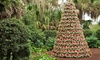 Bok Tower Gardens - Mountain Lake: $23 for Gardens Admission and Pinewood Estate Holiday Home Tour for Two at Bok Tower Gardens ($48 Value)