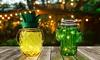 1x oder 2 LED-Solarleuchte in Ananas- oder Kaktus-Design
