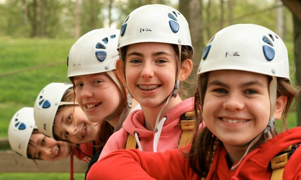 Child or Adult Ticket to Adventure Course at Aerial Extreme, Five Locations (Up to 50% Off)
