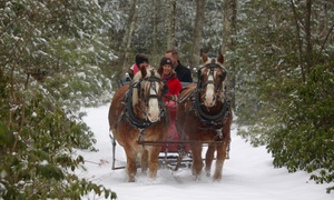 Up to 55% Off Sleigh or Wagon Ride at Cornerstone Ranch at Cornerstone Ranch, plus 6.0% Cash Back from Ebates.