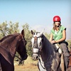 Up to 56% Off Horseback Riding in Cumming