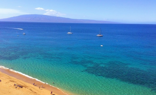 Choose from Maui hotels with huge savings!,+ followers on Twitter.