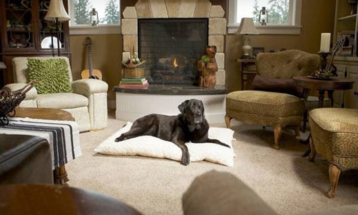 Furhaven Curly-Fur Dog Pillows: Furhaven Plush Dog Pillows (Up to 86% Off). Multiple Sizes and Colors Available.