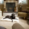 Up to 86% Off Furhaven Curly-Fur Dog Pillows