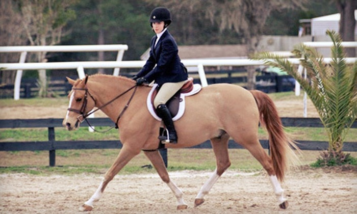 Larkspur Farm - Wilton: $32 for a Private Beginner Horseback-Riding Lesson or a Group Advanced Lesson at Larkspur Farm in Wilton ($65 Value)