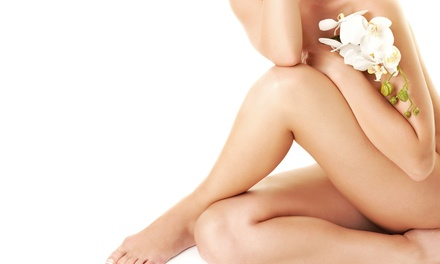 One, Two, or Three 30-Minute Electrolysis Hair-Removal Sessions at South Shore Center for Electrolysis (52% Off)