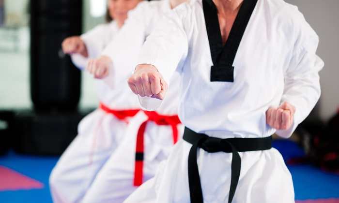Netta's Martial arts - Carteret: One or Two Months of Unlimited Karate Classes at Netta's Martial Arts (Up to 54% Off)
