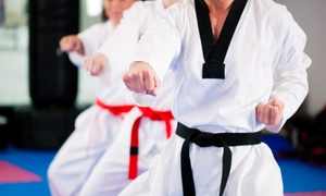 Tiger-Rock Martial Arts: $20 for Three Intro Taekwondo Classes and Training Shirt at Tiger-Rock Martial Arts ($40 Value)