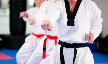 $20 for Three Intro Taekwondo Classes and Training Shirt at Tiger-Rock Martial Arts ($40 Value)