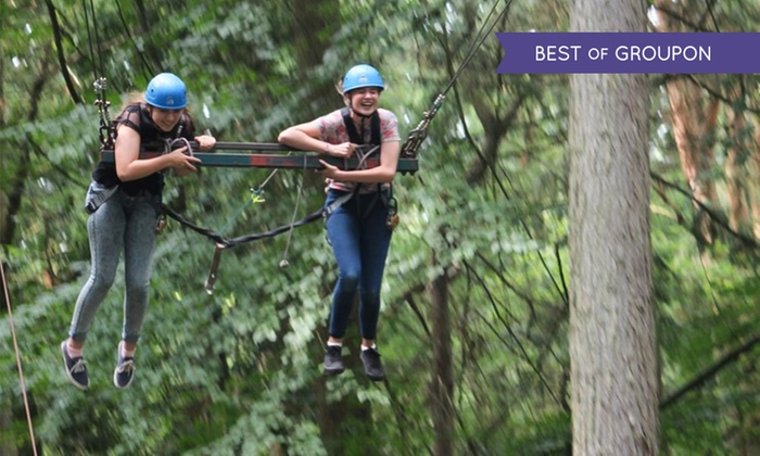 Extreeme Adventure - King's Lynn: Fast Tarzan Experience for Up to Five with Optional Assault Course for Two or Four at Extreeme Adventure (Up to 35% Off)