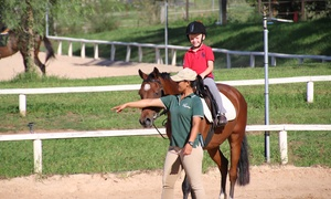 Oakville Equestrian Centre: Full Day School Holiday Horse Riding Camp for One Child at Oakville Equestrian Centre (Up to $200 Value)