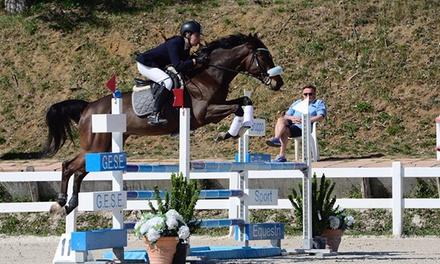 3 o 5 lezioni di equitazione a 24,90€euro
