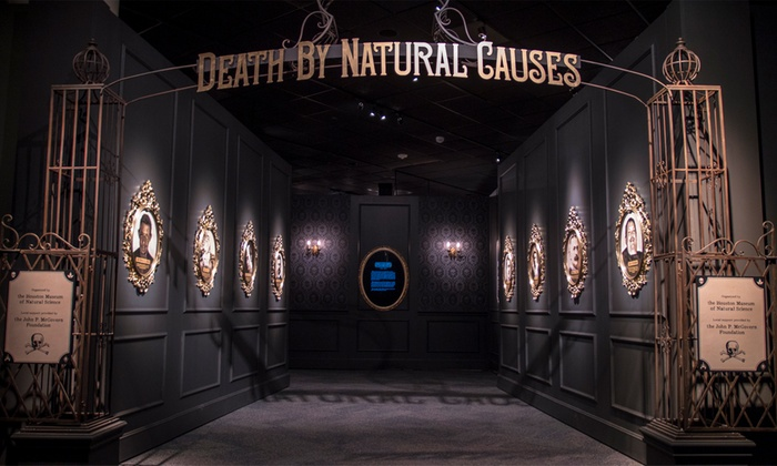 Houston Museum Natural Science Tickets