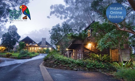 Gold Coast Hinterland: 2-, 3- or 5-Night Escape for Two People with Breakfast and Activities at Binna Burra Lodge