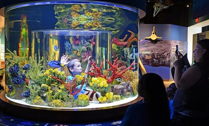 image for Admission to South Florida Science Center and Aquarium (Up to 50% Off). Four Options Avaiable.
