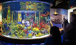 Up to 55% Off at South Florida Science Center and Aquarium at South Florida Science Center and Aquarium, plus 9.0% Cash Back from Ebates.