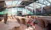 Vulkanpark GmbH - Mehrere Standorte: Eintritt für 1 oder 2 Erwachsenen, opt. mit 2 Kindern, zu den Vulkanpark-Attraktionen (bis zu 47% sparen*)