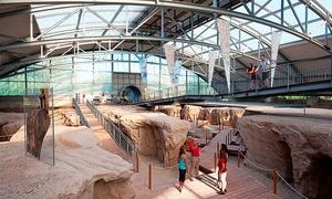 Vulkanpark GmbH: Eintritt für 1 oder 2 Erwachsenen, opt. mit 2 Kindern, zu den Vulkanpark-Attraktionen (bis zu 47% sparen*)