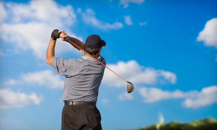 Dan Spiegel Golf Academy - Rosemont: One or Three 45-Minute Golf Lessons at Dan Spiegel Golf Academy (Up to 65% Off)