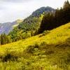 Bayerischer Wald: 2-4 Nächte mit täglichem All Inclusive
